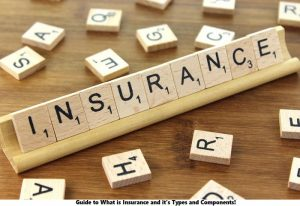 Guide to What is Insurance and it's Types and Components